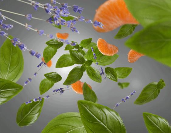 Anti-Odeur de Cuisine - frais & fleuri