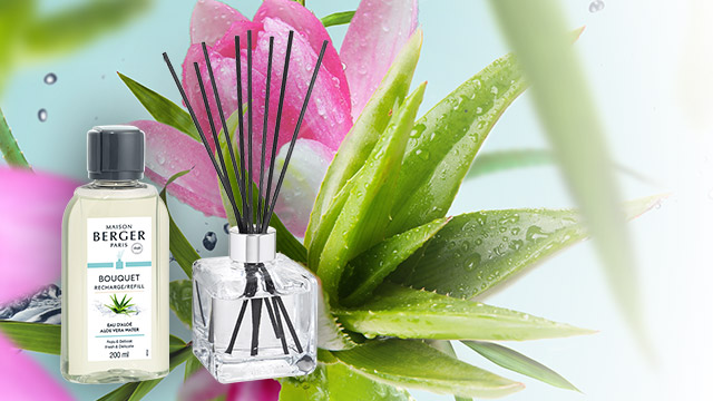 1 Parfumverspreider en 1 Navulling Eau d'Aloé