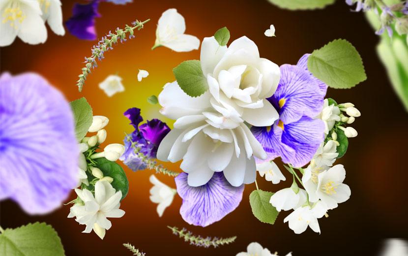 fleurs de Musc
